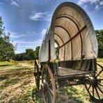 wagon127