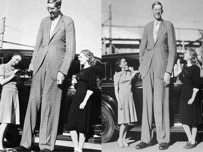 wadlow-robert-autograph-and-other-photo.jpg